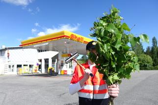 Shell-rahtariviikko
